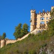 Hohenschwangau castle - Stock Photo