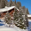 Winter in alps - Stockfoto