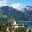 Spiez castle — Stock Photo #9604088