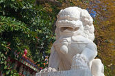Marble chinese lion — Stock Photo