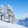 Winter in alps - Foto de Stock
