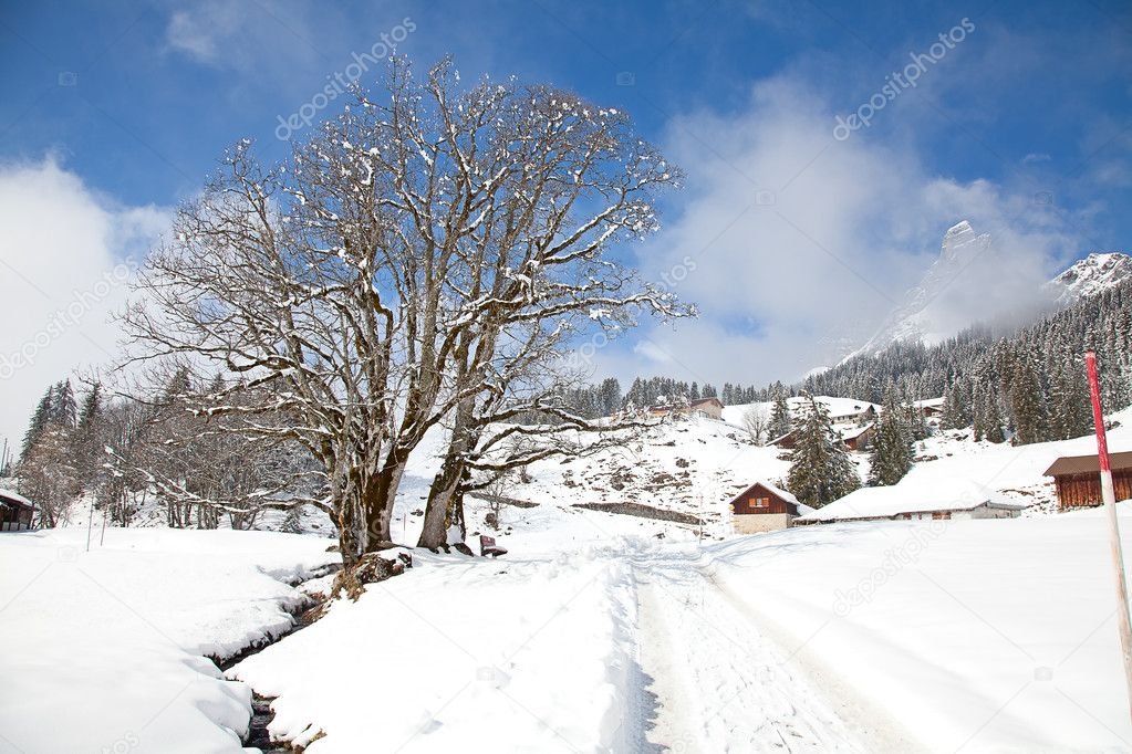 Winter in the swiss alps, Switzerland — Stock Photo #9684806