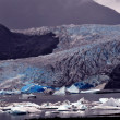 Alaskan Glaciers — Stock Photo #8332901