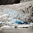 AlaskGlaciers — Stock Photo #8340127