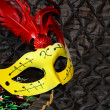 Mask at carnival — Stockfoto #8719506
