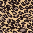 Leopard fur as background — Stock Photo #9577970