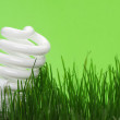 Energy saving compact fluorescent lightbulb — Stock Photo