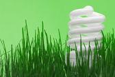 Energy saving compact fluorescent lightbulb — Stock Photo