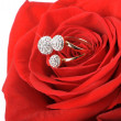 Red rose with a ring with jewels — Stock fotografie