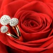 Stock Photo: Red rose with a ring with jewels