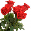 Bouquet of red roses — Stock Photo #8534683