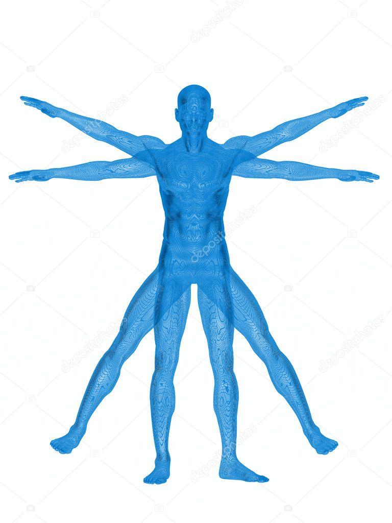 vitruvian man logo
