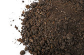 Heap dirt the top view — Stock Photo