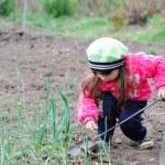 The little girl works in the garden — Stock Photo