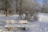 Bench in winter in the spa garden in Bad Laer, Lower Saxony, Germany — Stock Photo