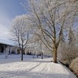 Spa park in winter - Bad Rothenfelde, Osnabruecker Land, Germany — Stock Photo