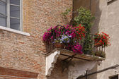 Mantua, old town building with balcony and flowers, Italy — Stock Photo