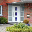Modern entry door - Stock Photo