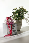 Pretty wrapped gift with roses in the background — Stock Photo