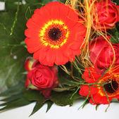 Colourful Flower Arrangement — Stock Photo