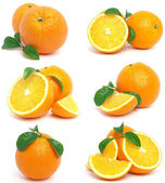 Orange frukter — Stockfoto