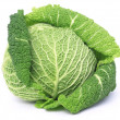 Stock Photo: Fresh cabbage