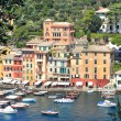 Portofino view. Liguria, Italy. — Stock Photo