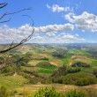 Hills of Piedmont. Northern Italy. - Stock Photo