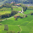 Green Fields. Piedmont, Northern Italy. - Stock Photo
