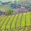 Vineyards and castle of Barolo. Piedmont, Italy. — Stock Photo