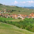 Stock Photo: Town of Barolo among hills. Piedmont, Italy.