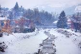 Snowy day in Alba, northern Italy. — Foto de Stock