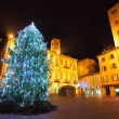 Christmas tree on central plaza. Alba, Italy. - Stock Photo