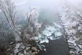 Reim Frost am Fluss Tanaro, Piemont, Italien. — Stockfoto
