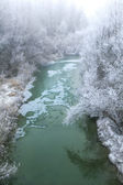 Small pond and trees covered by rime frost. — Stock Photo