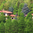 House among trees. Piedmont, Northern Italy. — Stock Photo