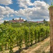 Vineyards and small town. Castiglione Falletto, Italy. — Stockfoto