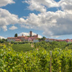 Vineyards and small town. Castiglione Falletto, Italy. — Stock Photo