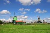 Zaanse Schans village. Netherlands. — Stock Photo