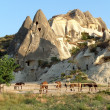 Cappadocia — Stock Photo #8373006