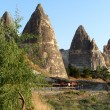 Cappadocia — Stock Photo #8373008
