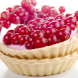 Pastry case with freshly picked red currant — Stock Photo