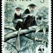 Vintage postage stamp. Douc monkey. — Stock Photo #10130292