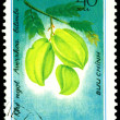 Vintage  postage stamp. Averrhoa  bilimbi  L. — Stock Photo