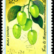 Vintage postage stamp. Ziziphus mauritiana L. — Stock Photo