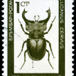 Vintage  postage stamp.  Bug - a stag beetle. - Stock Photo