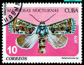 Vintage postage stamp. Butterfly. Heterochroma. — Stock Photo