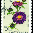 Vintage postage stamp. Chrysanthemums Thuy Tim. — Stock Photo #9175204