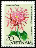 Vintage postage stamp. Crysanthemums Hong.. — Stock Photo