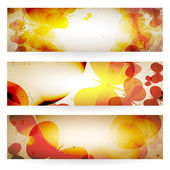 Set of grunge banners with butterflies. — Stock Vector
